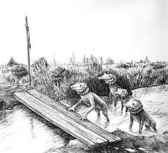 Water dogs (Marcos Telias) Tags: water río river perro aquatic dog dibujo sketch drawing illustration ilustración boceto bosquejo arte artista artist ballpoint bolígrafo pen lápiz fantasy