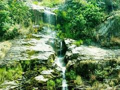 É verde o mundo? (Sophie Carrière) Tags: verde água cachoeira árvore pedra vida