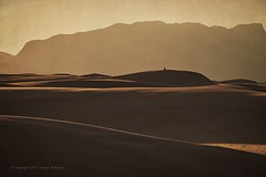 Alone in the Dunes (Steven Dempsey) Tags: solitary desert xt1 alone moody texture whitesands nature newmexico fujifilm silhouette landscape