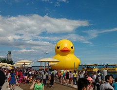 Ducky Revisited (Georgie_grrl) Tags: rubberduck harbourfront big yellow crowded toronto ontario