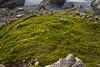 expo-8247 (ernst.scherr) Tags: adamekhütte gosau dachstein salzkammergut gletscher schnee natur mondaufgang mondlicht sonnenuntergang alpen pflanzen
