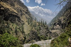 Shringi Himal in lower Tsum Valley (beudii) Tags: shringi himal nepal himalaya tsum valley manaslu trekking berge mountains tal landschaft