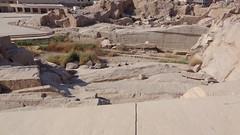 Unfinished Obelisk - Stone Quarries (Rckr88) Tags: unfinishedobelisk stonequarries unfinished obelisk stone quarries aswan egypt africa travel travelling stones rocks rock relics relic pharoah pharoahs ancient ancientegypt quarry