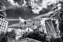 Skywards (Geza (aka Wilsing)) Tags: buildingsite cranes southbank