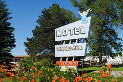 Thunderbird Motel, Chilton Wisconsin (Cragin Spring) Tags: wisconsin wi midwest unitedstates usa unitedstatesofamerica thunderbirdmotel motel motelsign sign flowers chilton chiltonwi chiltonwisconsin neon neonsign