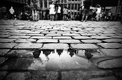 Reflection (Tom Cuppens) Tags: grotemarkt grandplace grandeplace bruxelles brussels brussel bw blackandwhite noiretblanc zwartwit monochrome straatfotografie streetphotography photographiederues