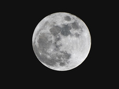 Distant shore 月 (garygaldamez) Tags: photography moon blackwhite bw 写真 黒と白 モノクロ写真 エルサルバドル elsalvador
