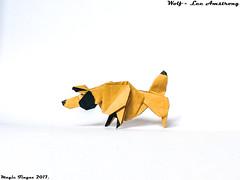 Wolf - Lee Amstrong. (Magic Fingaz) Tags: kurt lobo loup lupo origami serigala wolf волк भेड़िया หมาป่า 늑대 狼 origamiwolf
