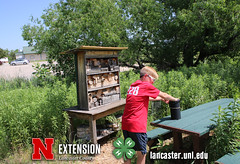 4-H Clover College 2017 - Picture This - 13 (UNL Extension in Lancaster County) Tags: picturethis