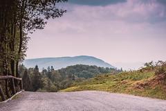 droga / road (Grzegorz Kubicki) Tags: góry mountains droga road widok landsape beskidy beskid śląski slaski ślaski