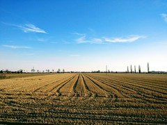 IMG_20170225_164455 (storvandre) Tags: storvandre lombardia lombardy countryside campagna nature landscape road zibido milano parco agricolo