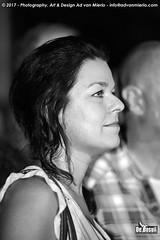 2017 Bosuil-Het publiek bij The Road Home en The Brandos 12-ZW