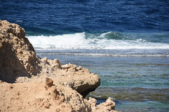 DSC_0107 (russellfenton) Tags: egypt marsaalam nikon nikon7200 7200 corayabeach steigenberger snorkelling sea boat