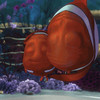 New trending GIF on Giphy (I AM THE VIDEOGRAPHER) Tags: ifttt giphy gif disney family hug pixar dad father set finding nemo fathers day marlin