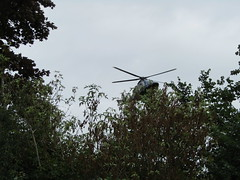 Helicopter landing at the Rugby Club (wallygrom) Tags: england westsussex angmering roundstonelane calahomes