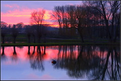Dream pond (fouargefred) Tags: reflextion pond sunset