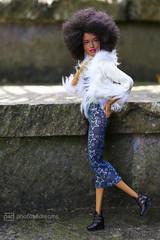 funky photoshoot 2 (photos4dreams) Tags: theafrogirlsp4d barbie mattel doll toy diorama photos4dreams p4d photos4dreamz barbies girl play fashion fashionistas outfit kleider mode puppenstube tabletopphotography aa beauties beautiful girls women ladies damen weiblich female funky afroamerican afro schnitt hair haare afrolook darkskin africanamerican
