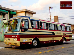 1915 Ramos Turismo (busManíaCo) Tags: busmaníaco bus ônibus mercedesbenz monobloco o400rs ramos turismo