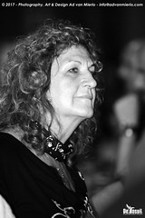 2017 Bosuil-Het publiek bij The Road Home en The Brandos 19-ZW