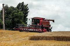 combine harvester (Nicolas4065) Tags: moissonneuse batteuse case ih agriculture agricultural machine agricole moisson harvest farming blé céréale
