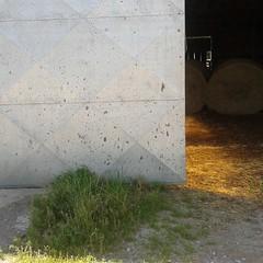 Il coraggio di iniziare lo svolgimento (plochingen) Tags: belgium countryside belgio belgica abstract abstrait astratto minimal less derive farm barn ferme