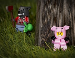 Here Piggy Piggy (jezbags) Tags: lego legos toys toy minifigure minifigures macro macrophotography macrodreams macrolego canon60d canon 60d 100mm closeup upclose pig wolf axe grass wood scared dinner piggy