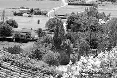 """Plongée sur la campagne monflanquinoise (Brigitte .. . """"Tatie Clic"""") Tags: 2012062037 juin été paysage monochrome campagnefrançaise route sentier chemin arbre toit toiture champ monderural lotetgaronne aquitaine francesudouest vuedenhaut hautagenais noiretblanc"""