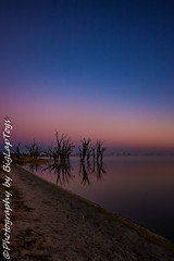 IMG_5535 (biglaptogs) Tags: barmera lakebonney riverland sa states sunsetsunrise