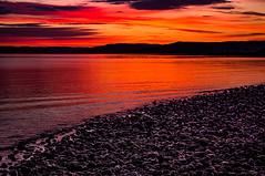 Pebbles On A Beach: A Dedication (Brian Travelling) Tags: dedication peace love one world mankind calm scotland
