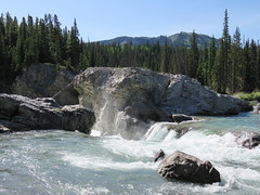 Elbow Falls, Kananaskis (annkelliott) Tags: alberta canada wofcalgary kananaskis kcountry rockymountains canadianrockies elbowfallstrail highway66 elbowfalls nature river elbowriver water falls waterfall rocks mountains trees forest landscape scenery recreation outdoor spring 7june2017 canon sx60 annkelliott anneelliott ©anneelliott2017 ©allrightsreserved