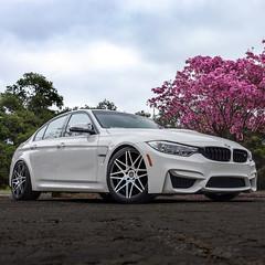 BMW F80 M3 | VRC13