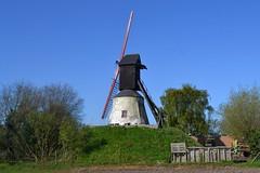 't Merelaantje, Londerzeel (Erf-goed.be) Tags: merelaantje windmolen molen londerzeel archeonet geotagged geo:lon=43075 geo:lat=510165 vlaamsbrabant