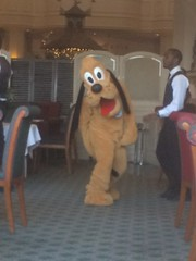 Pics from phone (Elysia in Wonderland) Tags: disneyland paris 2017 elysia elysias birthday 25th 25 anniversary holiday snapchat disney hotel inventions lunch characters meet greet pluto