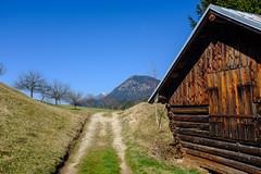 Am Geroldsee (Oberau-Online) Tags: geroldsee