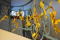 DSC_9872-56 (kytetiger) Tags: berlin scheunenviertel rosenthaler str stairs