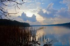 Straussee (Bakuman3188) Tags: strausberg märkischoderland brandenburg germany deutschland straussee see lake nature natur wasser water