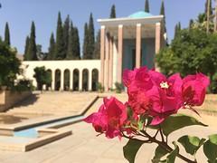 Tomb of Saadi Shirazi, Shiraz-Iran (bamdadnorouzian) Tags: water blue sky book iranian persian poems poem poet famous day quite relax hot summer pink green tree beautiful saadi shiraz asia iran flower flowers