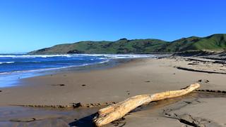 Te Tapuwae o rongokako marine reserve. (Explored)