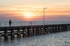 Alone (.Stephen..Brennan.) Tags: clouds fa77 jetty moonta pentaxk3 seascape southaustralia sun sunset moontabay australia