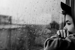Rain (Picturepest) Tags: schwarzweis schwarzweiss sw blackwhite bw blackandwhite monochrome einfarbig twartwit noir deutschland deutsch german germany allemagne germania alemania europe europa sensational