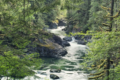 The Riverbend (gwendolyn.allsop) Tags: river green water oregon pnw trees forest little north santiam d5200