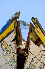 LA PROA ROTA - THE BROKEN PROW (alfonsomejiacampos. PLEASE READ MY PROFILE) Tags: proarota barca madera puertodevaldez porlamar islademargarita venezuela