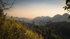 (Flutechill) Tags: mountain nature landscape sunset scenics outdoors hill asia mountainpeak sky tree forest sunrisedawn travel morning beautyinnature fog mountainrange summer dawn thailand chiangmai doiangkhang