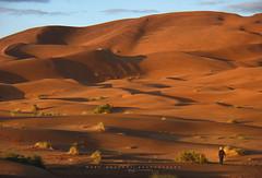 Desierto de Merzouga. Marruecos. (Raúl Barrero fotografía) Tags: desert desierto merzouga morocco travel marruecos