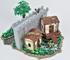 Summer Joust 2017: Wall and houses (main) (Michael the juggler) Tags: swamp castle wall houses house tree landscape plants river water swampy marsh path lego
