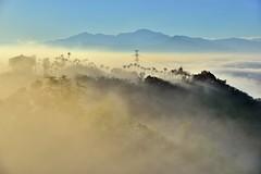 橫山仙境~晨光雲海~  Clouds sunrise rays (Shang-fu Dai) Tags: 台灣 taiwan 南投 clouds nikon sky 雲海 橫山 橫山仙境 seaofclouds d800e afs24120mmf4 sunrise 日出 landscape formosa 戶外 天空 霧