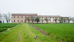 Country house (lorenzog.) Tags: countryhouse house building abandoned russi faenza emiliaromagna italy landscape duck ilobsterit spring nikon d300 prada