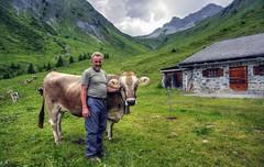 Idyllic alpine dairy