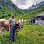 Idyllic alpine dairy thumbnail