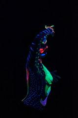 DSC01158 (noeggerathaydee) Tags: luznocturna aydeénoeggerath sonynext sony luz neón paint body bodypaint